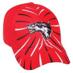 Headwear Express Cap