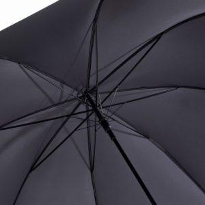 Curve Umbrella