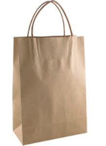 Standard Brown Kraft Paper Bags