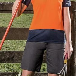 Ladies Hi-Vis Zone Polo