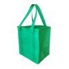 nwb016-non-woven-cooler-bag-with-zippled-lid-green